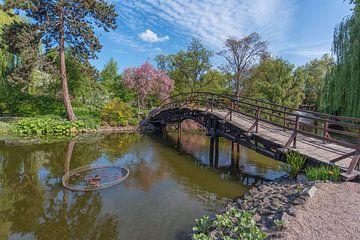 Japanse tuin in Wroclaw polen. van Robin van Maanen