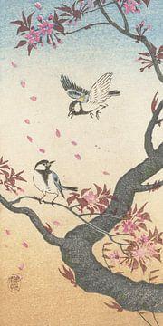 Zwei große Titten am blühenden Baum von Ohara Koson