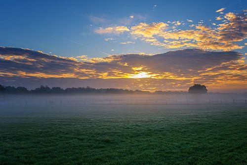Sun vs Mist II van Sander Peters Fotografie