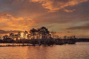Warm gekleurde zonsopgang in een waterrijk van Tony Vingerhoets