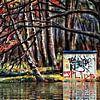 Deep down in the forest van Ruben van Gogh thumbnail