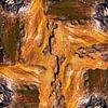 Bark 005 van Jeroen van der Meij thumbnail