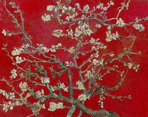 Amandelbloesem van Vincent van Gogh (Donker rood)