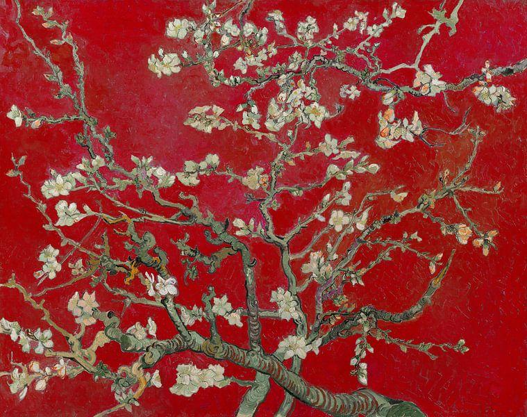 Amandelbloesem van Vincent van Gogh (Donker rood) van Meesterlijcke Meesters