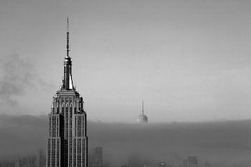 New York van ard bodewes