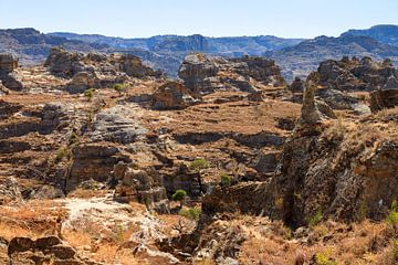 Isalo Madagaskar van Dennis van de Water