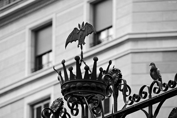 [barcelona] - ... bat & dove