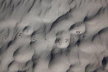 Spuren im Sand von Thomas Jäger