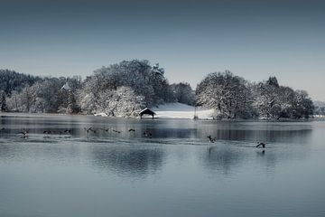 Winter am Staffelsee van Franz Nagler