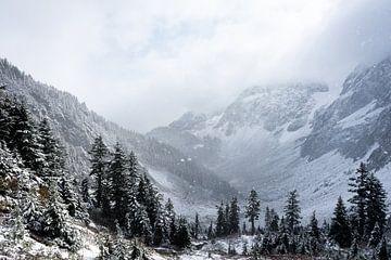 Schnee in den Bergen von Rauwworks