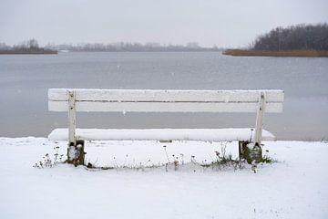 Bank aan de Neustädter See bij Magdeburg in de winter van Heiko Kueverling