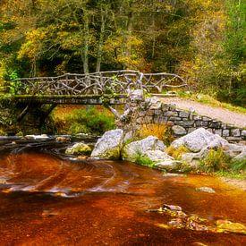 Timber bridge von Karla Leeftink