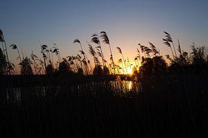 Zonsondergang in de Polder van Marco van der Veldt
