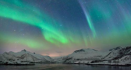 Nordlichter im nächtlichen Himmel über den Lofoten Inseln in Nordnorwegen
