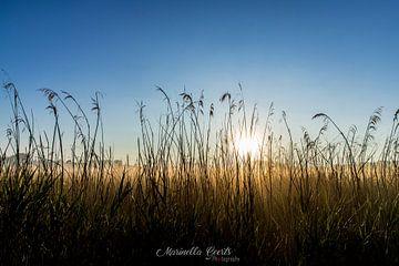 Sonnenaufgang von Marinella Geerts
