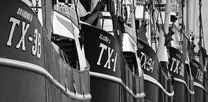 Viskotters van Texel