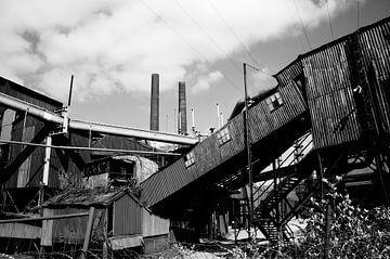 industrial weed von Bas Rollerman