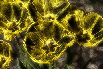 Tulpen aus Glas van Edgar Schermaul
