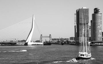 Rotterdam | Erasmus-Brücke von Daan Pleijsier