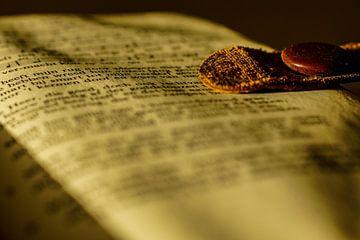 Bibel von Wolbert Erich