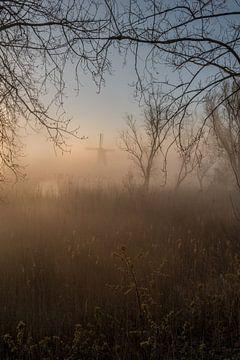 Nebliger Sonnenaufgang an der Mühle von Moetwil en van Dijk - Fotografie