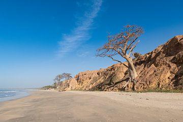 La plage de Gambie sur Marc Hederik