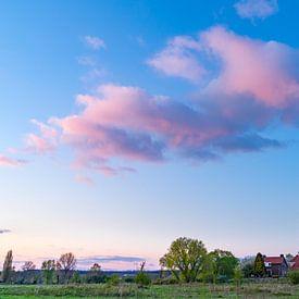Rozewolk boven huisje van Fokko Erhart