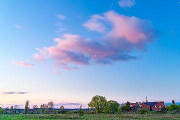 Rozewolk boven huisje van