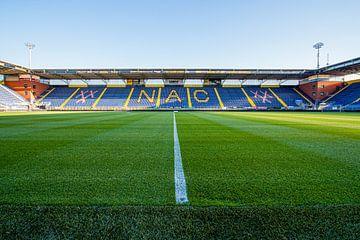 Het veld van het Rat Verlegh Stadion van Martijn Mureau