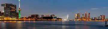 Rotterdam skyline met de icons de Euromast en de Erasmusbrug van Pixxi Hut |  Jaimie