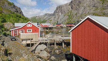Nusfjord van Lia Lavoir