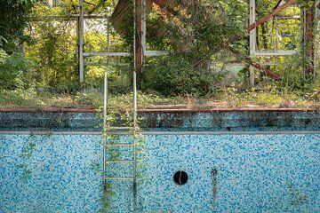 Het laddertje van een Vervallen Zwembad van Perry Wiertz