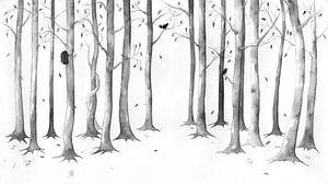 Timeless forrest, een tijdloos bos 3