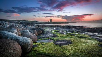Rotsblokken en zeewier aan Ierse kust tijdens zonsondergang van Michel Seelen