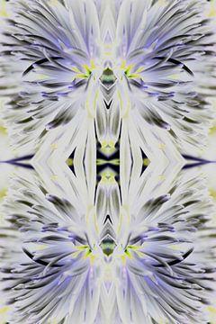 Chrysantheme lebhaftes Leuchten von EH? by ILSEHA