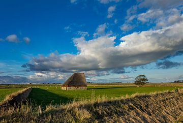 Schapenboet Texel sur Texel360Fotografie Richard Heerschap