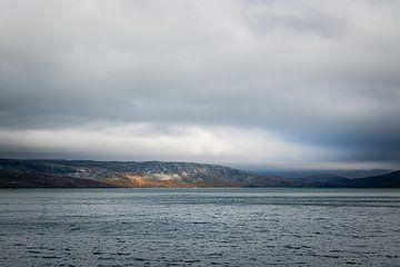 Kale rosten in het meer in Noorwegen van Mickéle Godderis