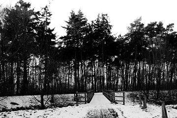 Brücke von Emma Wilms