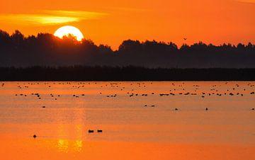 Zonsopkomst in Lauwersmeer von Remco Van Daalen