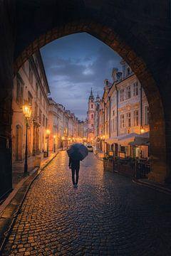 Praagse straat van Iman Azizi