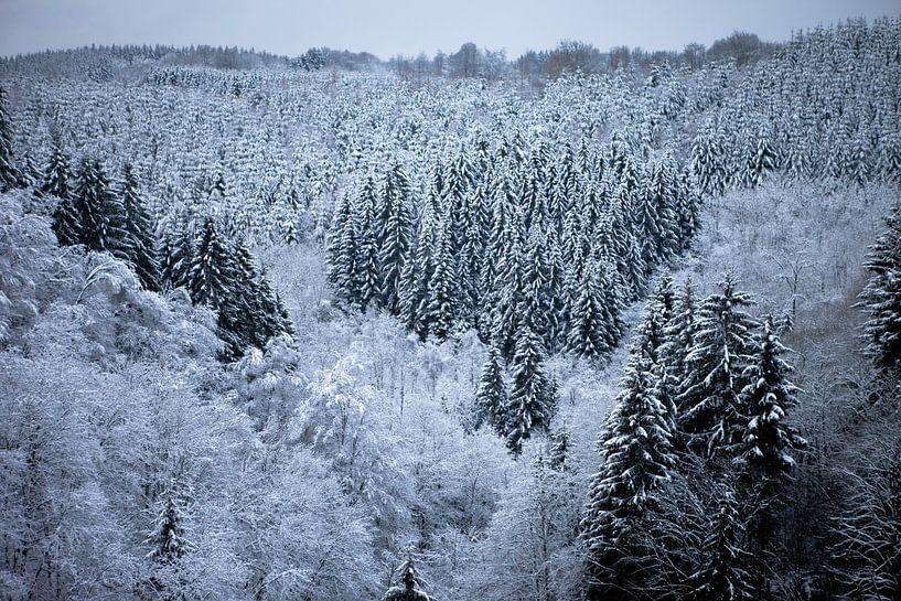 Wintersprookje van Olga Rook