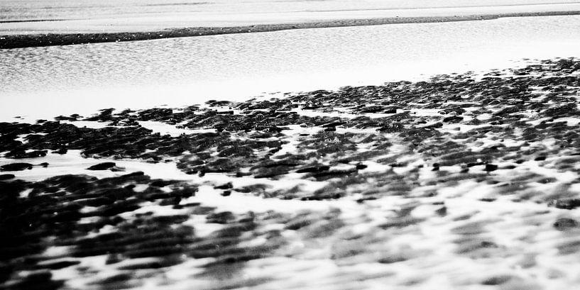 Het Noordzeestrand bij Noordwijk VI van Chantal Heusschen