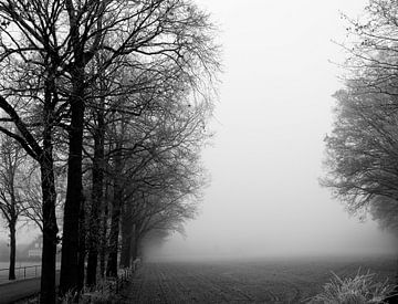 Mistige dag van Manon Ruiter
