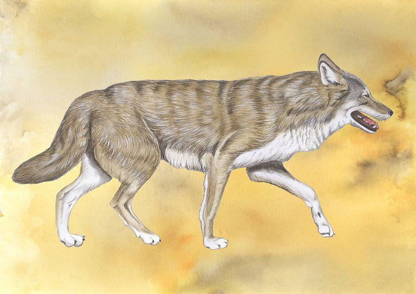 Wolf von Jasper de Ruiter