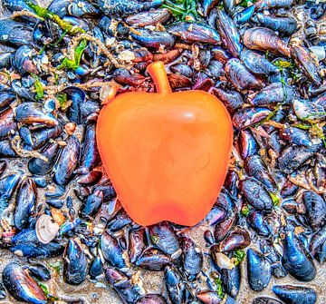 Apple on the Beach - Mossel van Alex Hiemstra