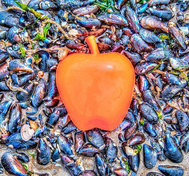Apple on the Beach - Mossel