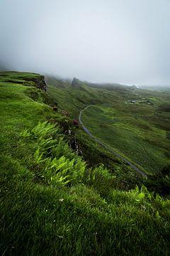 Grünes Tal von Ken Costers