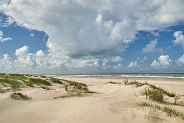 Düne und Strand von Ad Jekel