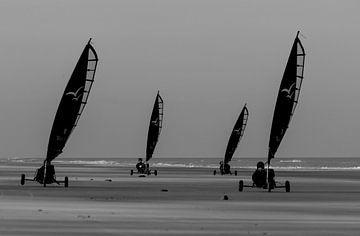 Strandzeilen aan de kust van Peter Leenen