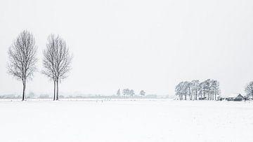Winter holländische Landschaft von Hilda Weges